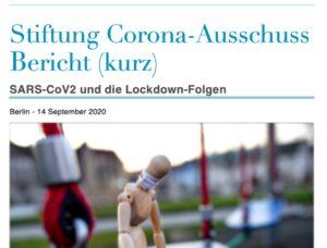 Corona Ausschuss Zwischenbericht