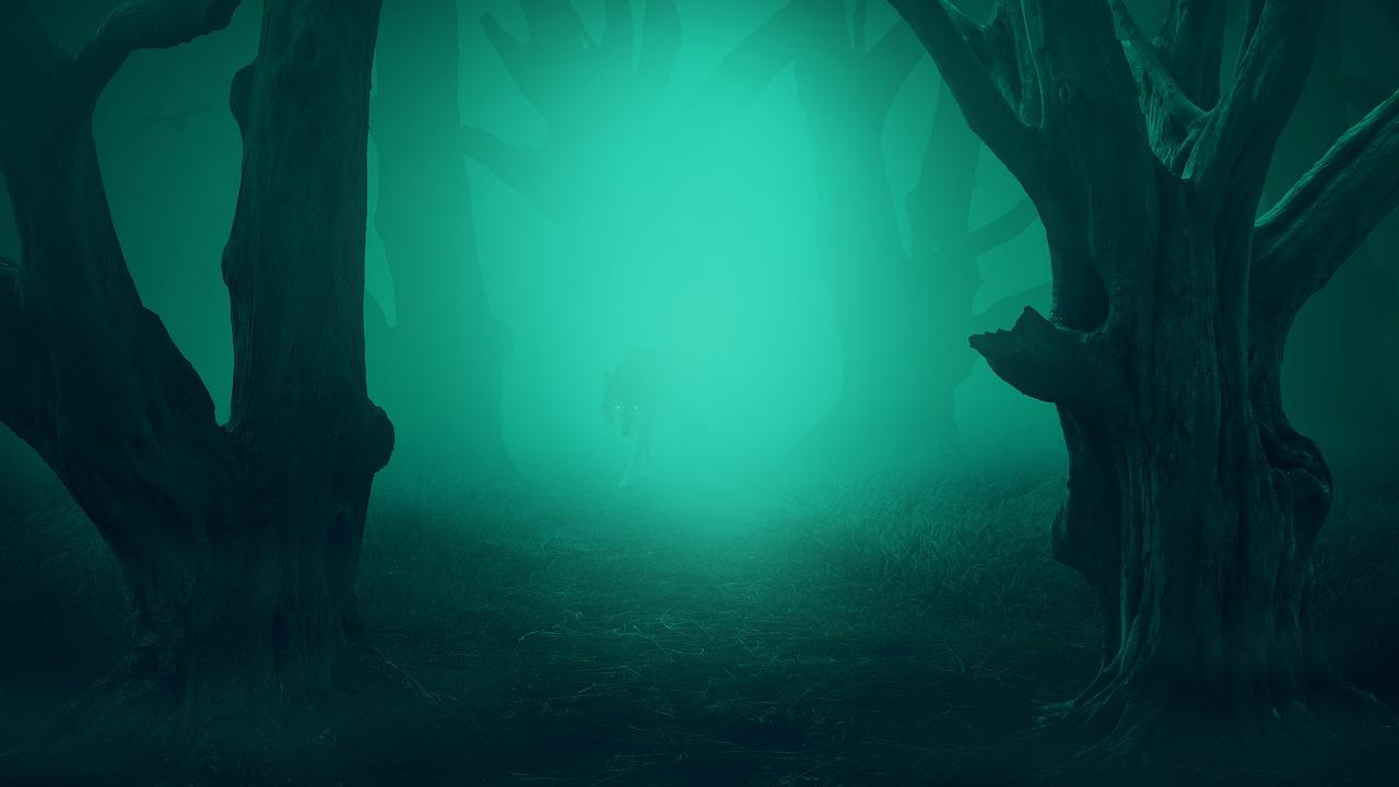 wo ist der wolf
