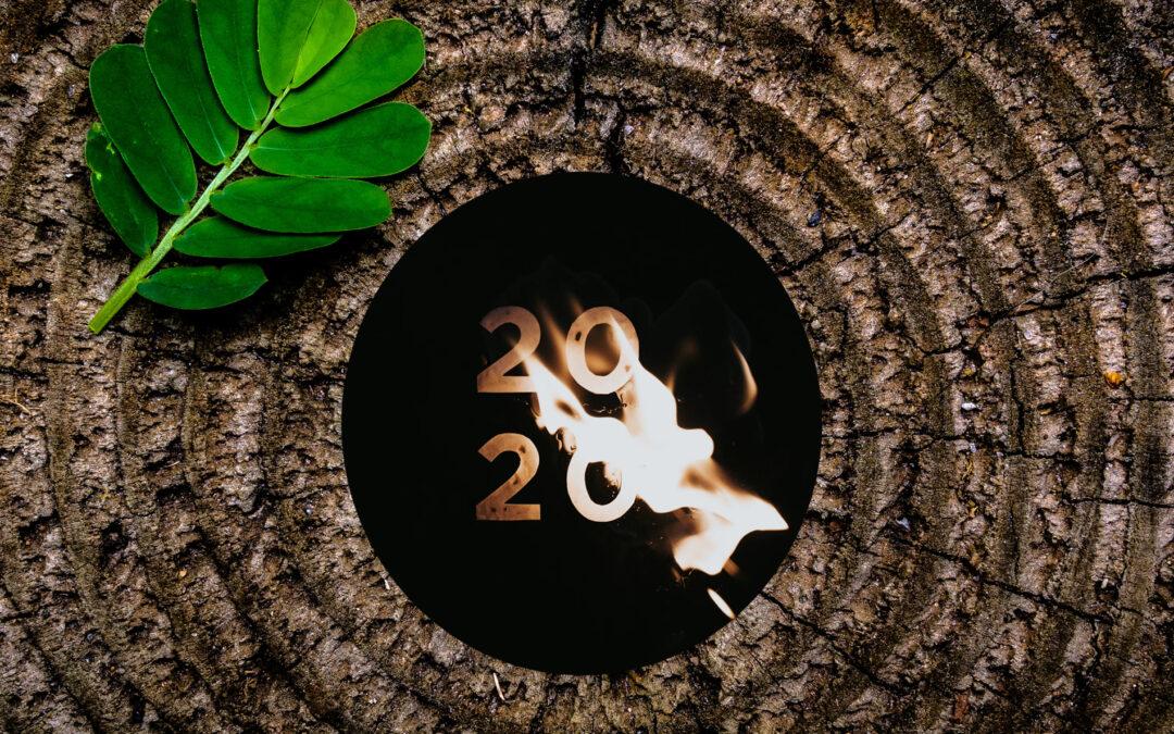 Ein Jahr gelebter Wandel – ein Jahr Erkenntnisgewinn