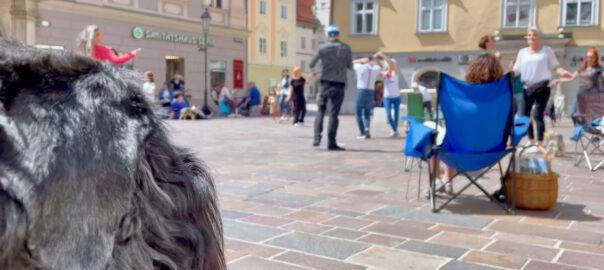 FLASHMOB Klagenfurt am 1. Mai 2021 – im Zeichen von Wahrheit, Frieden und Freiheit